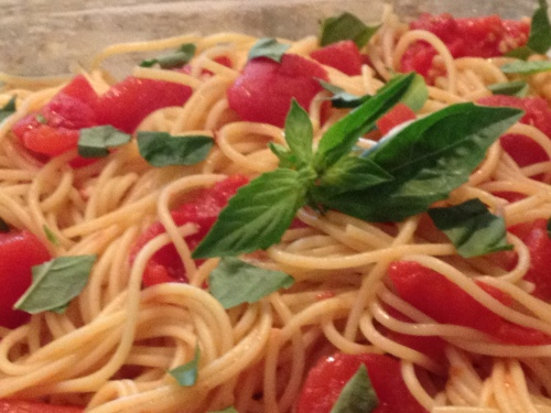 vegan, vegetarian, plant based recipe, free stuff